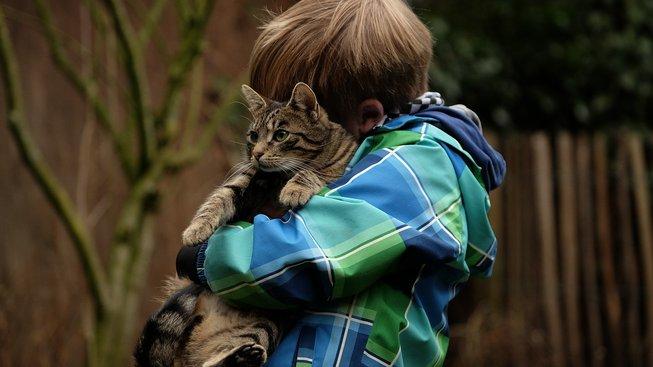 Zdraví prospěšná domácí zvířata: Pomáhají předcházet alergiím i obezitě