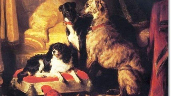Mazlíčci královny Viktorie: Jaké psy si oblíbila?