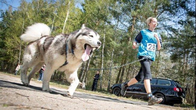 Chcete sportovat, ale máte psa? Sportujte spolu!