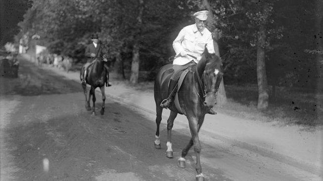 Hektor, oblíbený kůň prezidenta Masaryka