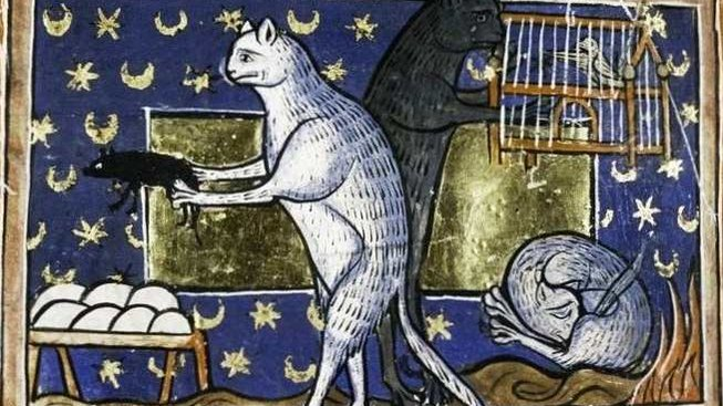Jak vnímali lidé kočky ve středověku?