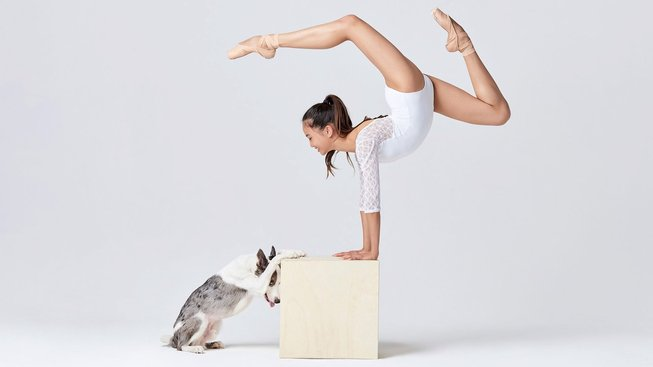 Podívejte se: Když se spojí psi a balet