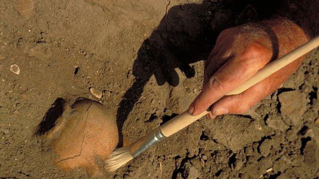 Posvátný psí hřbitov, ve kterém leží stovky psů, co uměli léčit