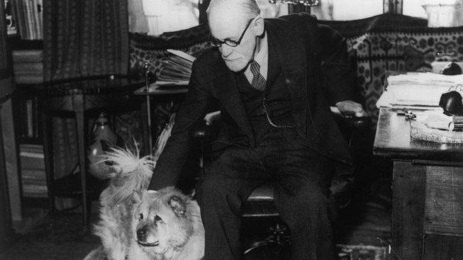 Fenka, která pomáhala slavnému psychoanalytikovi