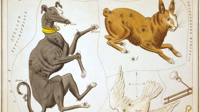 Psi na obloze: Nejjasnější hvězdou nebe je psí čumák Sirius