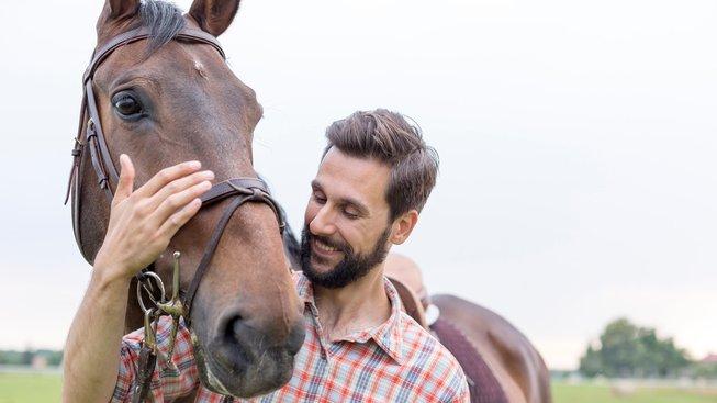 Chtěli byste si pořídit koně? Máme pro vás pár tipů