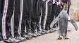 Tučňák generálem - nejúspěšnější ve službách armády