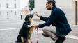 Kouřením zaděláváte svému psovi či kočce na rakovinu