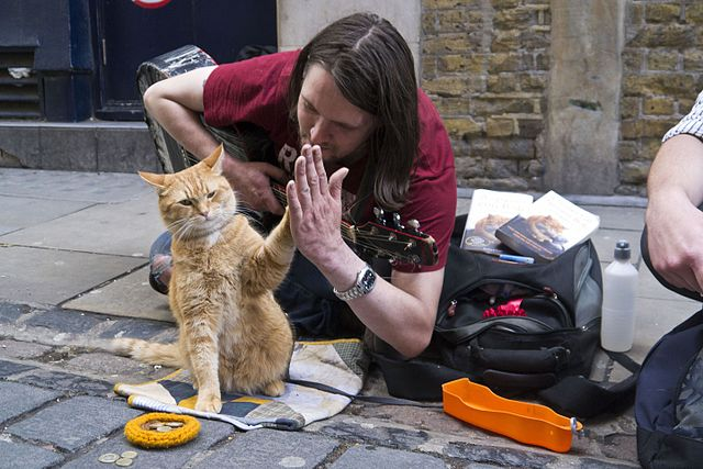 Bob_the_Street_Cat_high-fives_his_official_biographer_James_Bowen_on_the_publication_of_their_new_book._(7510771672)