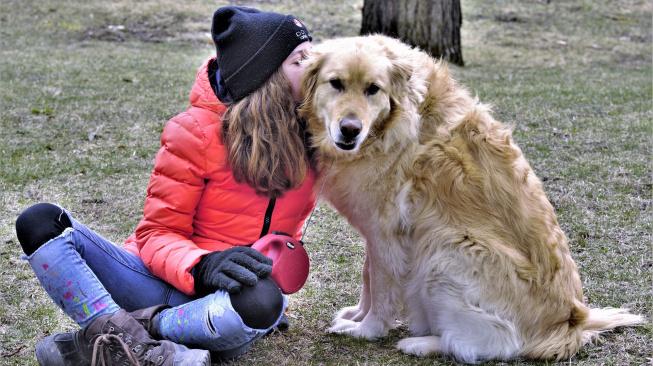 Čím lidé matou psy