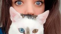 Kočičí hvězda Bowie