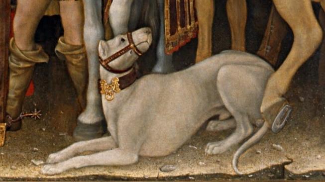 Alaunt - středověký psí silák, který dal základ mastinovi i cane corso