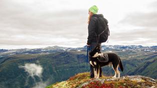 Nejlepší psi na dlouhé výlety