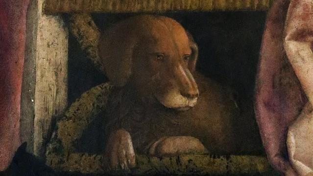 639px-Andrea_mantegna,_camera_degli_sposi,_1465-74,_parete_nord,_detta_della_corte_08_ludovico_gonzaga_e_servitore,_particolare_del_cane