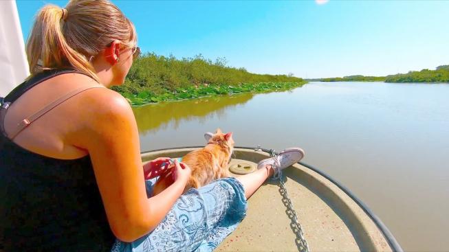 Výlety s kočkou? Žádný problém, dokazuje kočičí cestovatelka Baileys