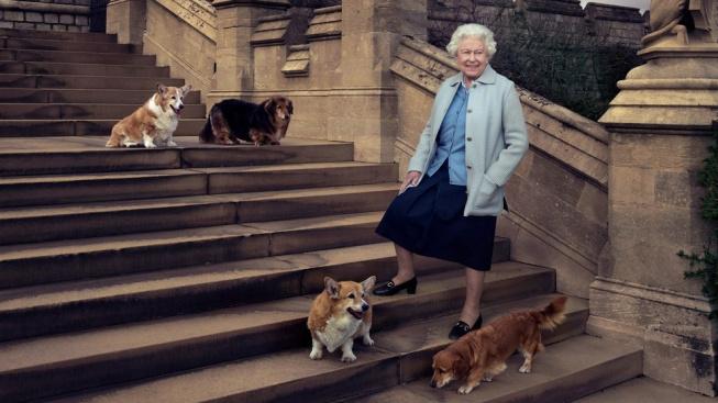 Alžběta II. se rozloučila s Vulcanem. Z její psí smečky zbyla už jen Candy