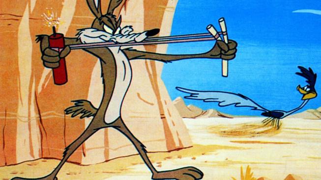 Kojot versus kukačka: Jak by dopadl skutečný lov?