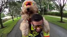 Na kole se psem