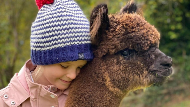 Dívenka má ty nejroztomilejší nejlepší kamarádky! Lamy