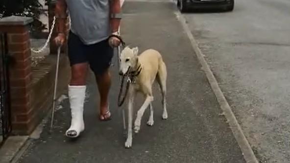 Muž utratil u veterináře devět tisíc, aby zjistil, že s ním jeho pes soucítí