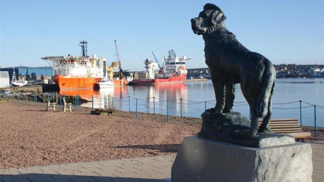 Bamse - psí válečný hrdina, kterému na pohřbu salutovaly stovky námořníků