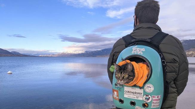 OBRAZEM: Kočičí cestovatelky se výzev nebojí