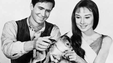 Kráska a koloušek: Neobvyklý mazlíček Audrey Hepburnové