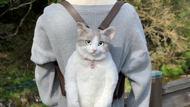 Obdivuhodné i děsivé zároveň: Japonka vyrábí batohy podle uhynulých koček