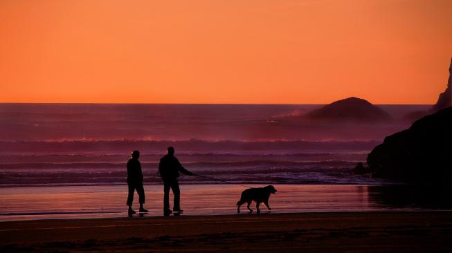 Devět vědou podpořených důvodů, proč si pořídit psa