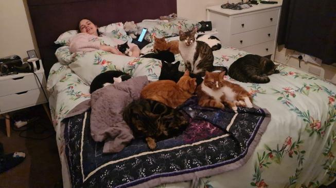 Záchranářka v práci i doma: Stará se o 28 handicapovaných koček