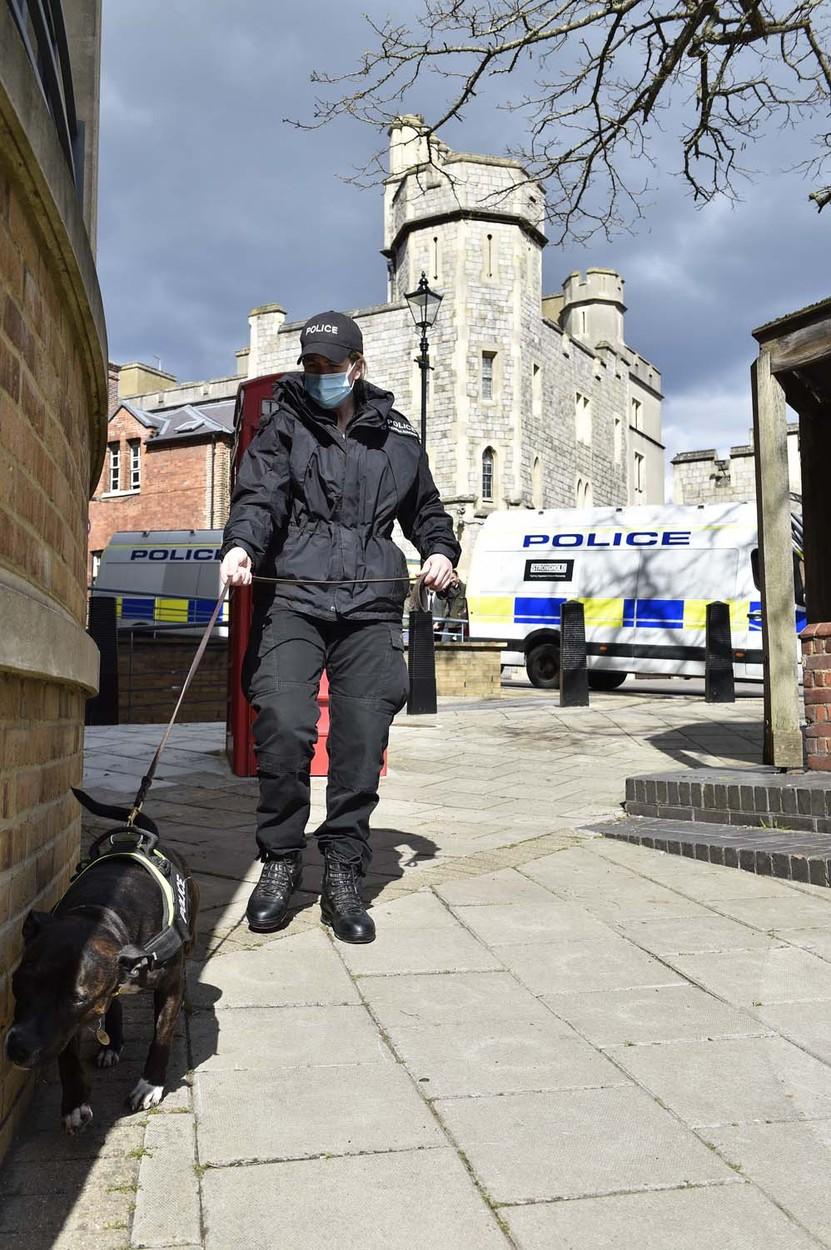 Policejní stafford
