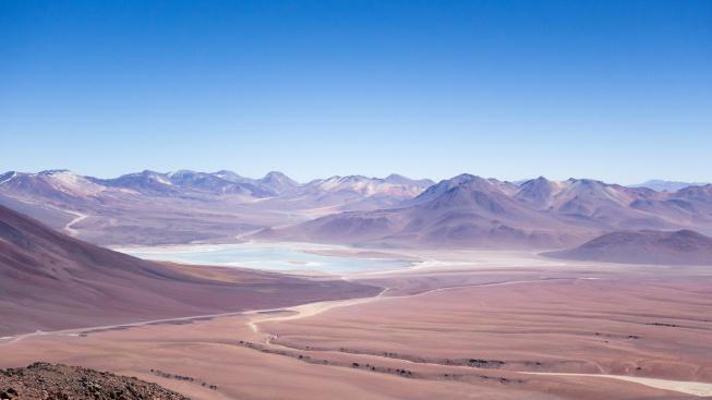 Mumie papoušků v poušti Atacama vypovídají o temné minulosti jejich chovu