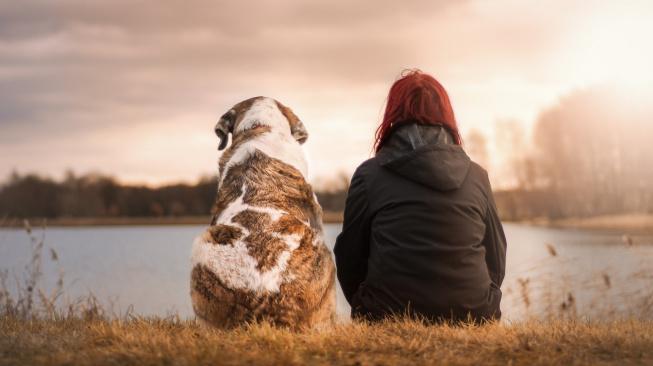 Extroverti vs. introverti. Kdo má při výcviku psa větší úspěchy?